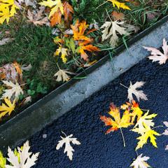 Трошки осені