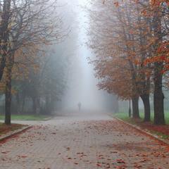 Згадуючи осінь
