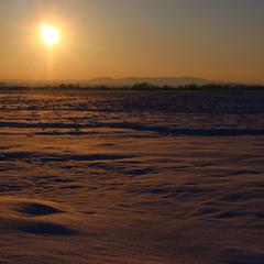 Зимовий мінімалізм