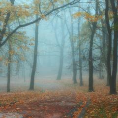 Осінь в парку Івана Франка