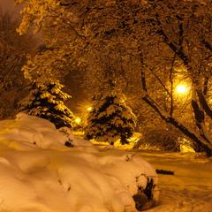 Парк у світлі ліхтарів