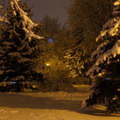 Зима у парку