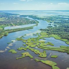 Днепровские плавни с высоты