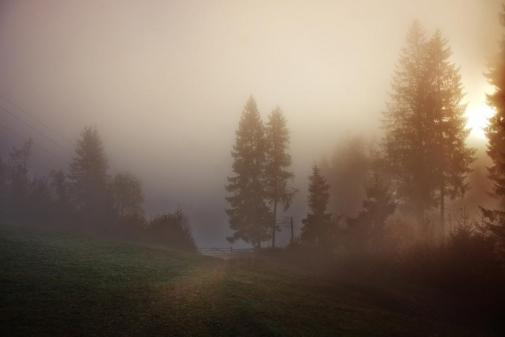 форуме как правильно фотографировать в туман надписей подчёркивают, что