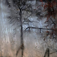 Окно в зиму