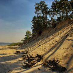 Тени на белом песке.......