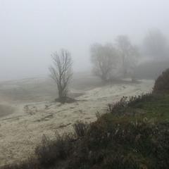 Упав Туман, як сива хмара.