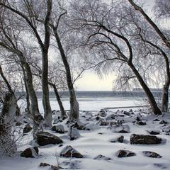 Спогади про зиму.