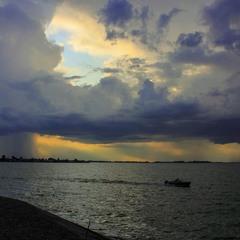 - На крилах вітру дощ примчавсь.