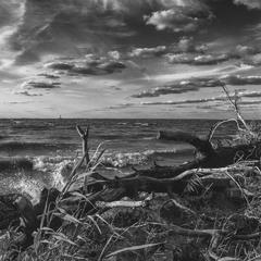 А хвилі з берегом і вітром гомонять