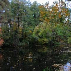 Ода Осені!