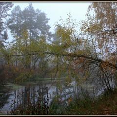 Про туман ,дерева,що ця осінь така.