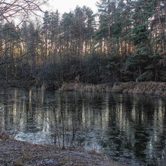 Мерзнут как реки,сумерки зимние.