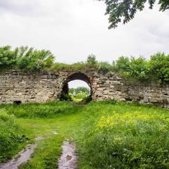Руїни Залозецького замку