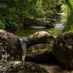 река Белокуриха...