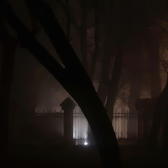 Туман на Фонтане..
