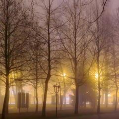 Большой Фонтан в тумане..