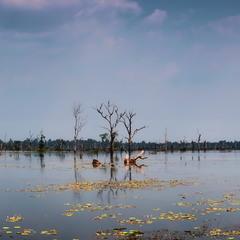 Містичне озеро...
