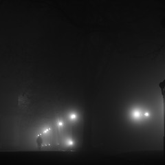 Туман в городе N