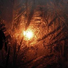 Мороз и солнце))