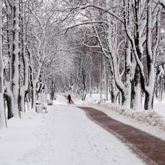 Прогулка по зимнему скверу