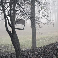 Осень в белые туманы  сад хоронит по утрам...