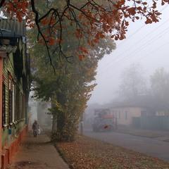 Ноябрьский туман