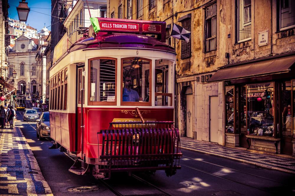 хаски самаре красивые трамваи фото парадоксально это