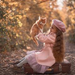 О Соне, её котёнке Тиме и старом чемодане