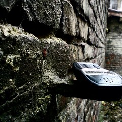 ...даже в дождь жду твоего звонка_...