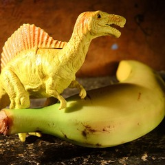 ...банано-вирус...привёл к вымиранию мелких животных на земле...