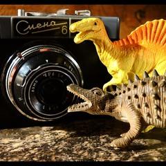 ...древний вирус - фотографа не даёт покоя всему что движется и не движется...