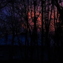 ...вечерняя фото-каша...