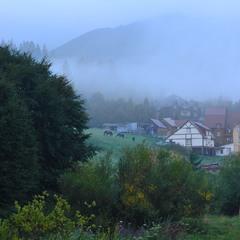 Туманный Пилипец