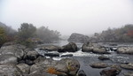 Річка в ранішньому тумані