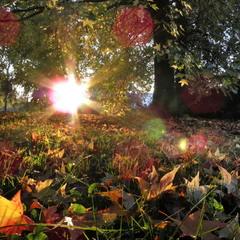 Запальна осінь