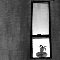 Вікно у простір іншого світу..