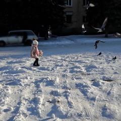 Дівчинка та голуби