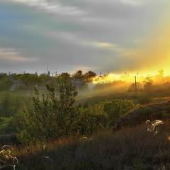 Ковила на заході.. Сонце наповнює, стелеться, дарує себе щиро перш ніж піти до ліжка