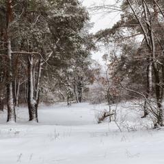 Зима на Жуковом острове