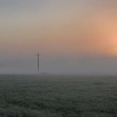 Утренние прогулки