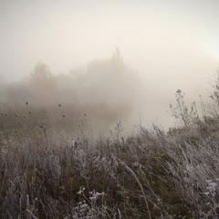 Туманное утро ...