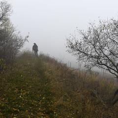 Уходящий в туман