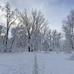 Когда выпал снег