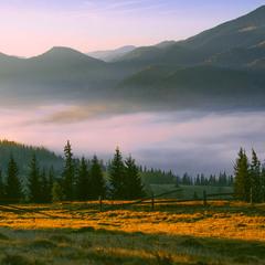Туман пливе долиною