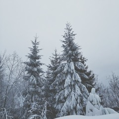 шматочок фінської зими