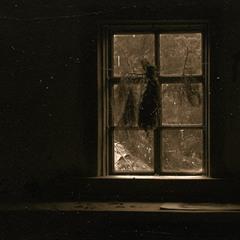 вікно у ліс. ζ