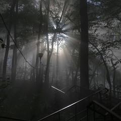 Лестница к солнцу