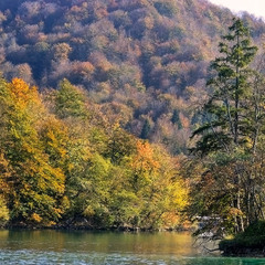 Плітвіцька осінь