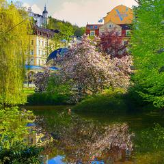 Карловарська весна